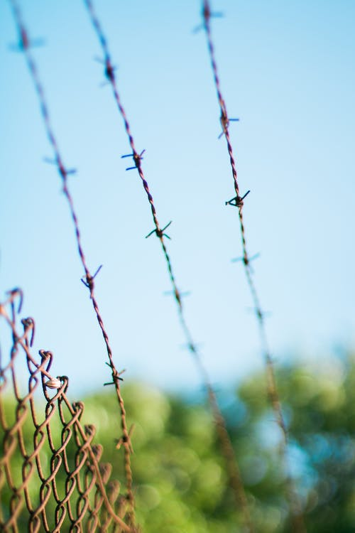 Siatka ostrzowa – jakie są jej korzyści do zabezpieczania terenu