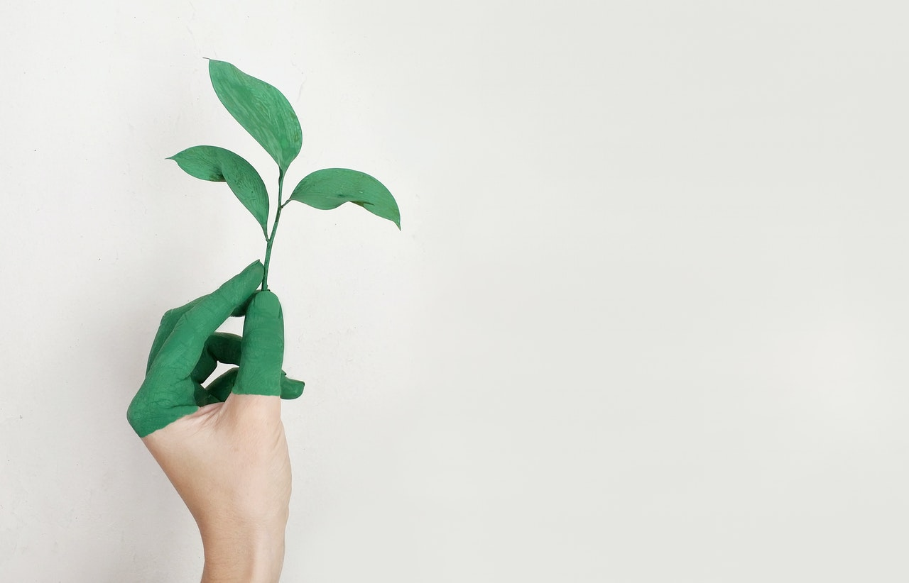 Dlaczego naturalne środki czystości są najlepsze dla Twojego domu?